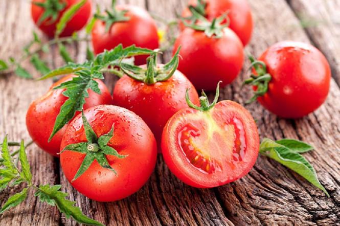 Hình ảnh minh họa cà chua